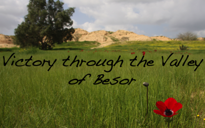 Victory through the Vallley of Besor